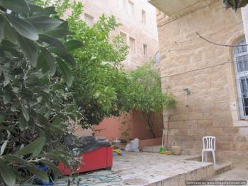 Garden Apt Near the Old City
