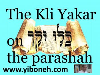 Thursday November 21 Insights to the Torah Portion with Rabbi Aaron Dovid Poston in Baka