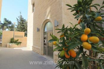 Abu-Tor , Mini Penthouse with superb terrace � Long term rental