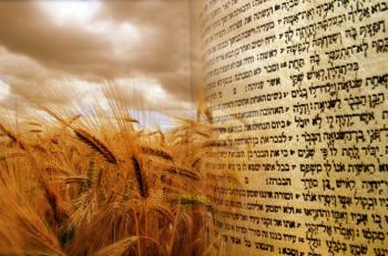 VIDEO: The Torah of Kindness and Truth - A Shavuot shiur by Rabbi Sacks