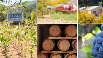 12 wonderful wineries to visit in Israel