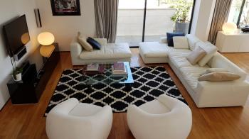 Exclusive penthouse in Tel Baruch north