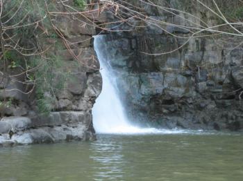 More Golan waterways, including Jordan River, may be contaminated