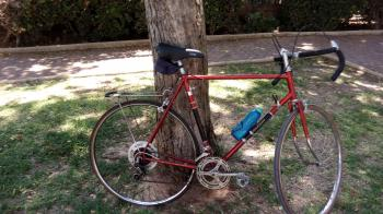 CLASSIC VINTAGE ORIGINAL RALEIGH ROAD BIKE SIZE XL 60 CM fits someone taller than 1'80 cm received