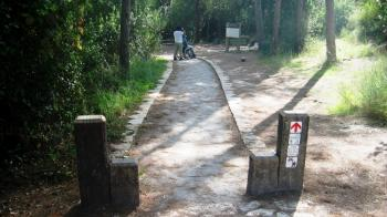 Israeli nature sites are an accessible walk in the park