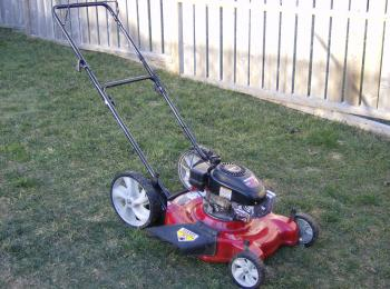 WANTED: Lawn Mower, hand or 4 wheel type