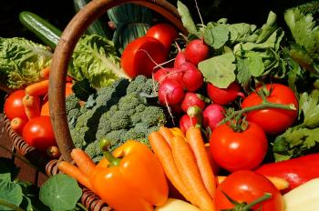 Vegetable prices likely to rise