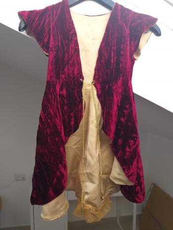 costume velvet coat