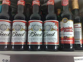 Budweiser Beer to be Sold in Israel