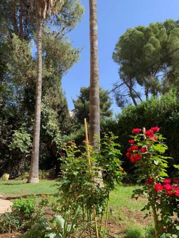 wonderfull garden apartment !