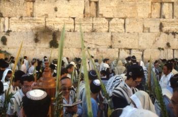 Sukkot Events in Jerusalem!