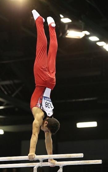 Israeli gymnast wins silver medal at World Championship
