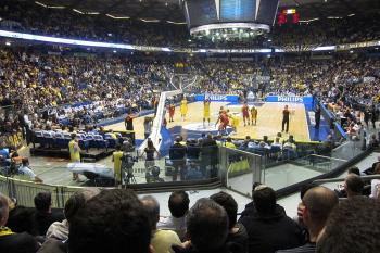Maccabi Tel Aviv waves lulav before big game