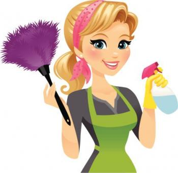 *** WANTED - A CLEANING LADY ***