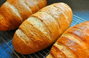 New York Deli RYE Bread on SPECIAL at Saidels Bakery