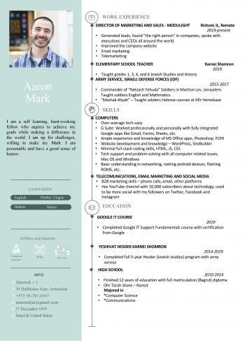 Resume of Aharon Mark