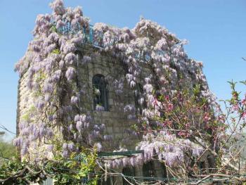 Amazing house in Ein Karem