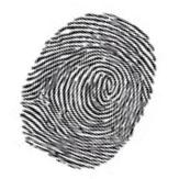 Avraham Yeshaya Fingerprinting service