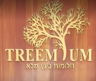 Treemium Exquisite Custom Made Furniture