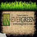 Evergreen Premium Synthetic Turf