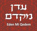 Eden Mi Qedem: Neshama with Groove (Wedding/Event Band)